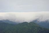 偷得浮生半日閒-再訪綠光森林:DSC07463.JPG