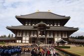 Day 2, 奈良鹿公園‧世界遺產東大寺:DSC05340.JPG