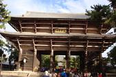 Day 2, 奈良鹿公園‧世界遺產東大寺:DSC05267.JPG