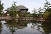 Day 2, 奈良鹿公園‧世界遺產東大寺:DSC05286.JPG