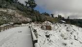 合歡山追雪趣:6972.jpg