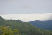偷得浮生半日閒-再訪綠光森林:DSC07464.JPG