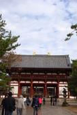 Day 2, 奈良鹿公園‧世界遺產東大寺:DSC05299.JPG