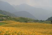 初秋造訪六十石山:DSC04941.JPG
