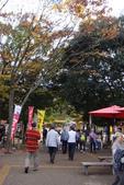 Day 2, 奈良鹿公園‧世界遺產東大寺:DSC05252.JPG
