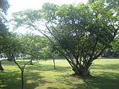 2009金門(遊學台灣):DSC09391.JPG