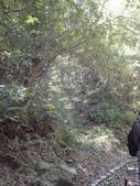 花蓮保育工作假期:DSC00831.JPG
