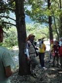 花蓮保育工作假期:DSC00833.JPG