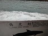 2010花蓮賞鯨+遊學台灣(台東):DSC00390.JPG