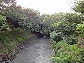 2010花蓮賞鯨+遊學台灣(台東):DSC00415.JPG