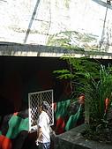 2009金門(遊學台灣):DSC09348.JPG