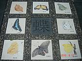 20100601:谷關九族快樂遊005.JPG