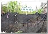 社區一家的志工為竹南鎮公館社區圖書館出點子:480-DSCN8221.JPG