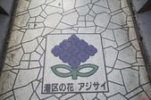 2013冬日本東京自助之旅~1/21淺草、天空樹:DSC01860.JPG
