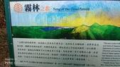 太平山山毛櫸步道:山毛櫸步道048-20201114.jpg