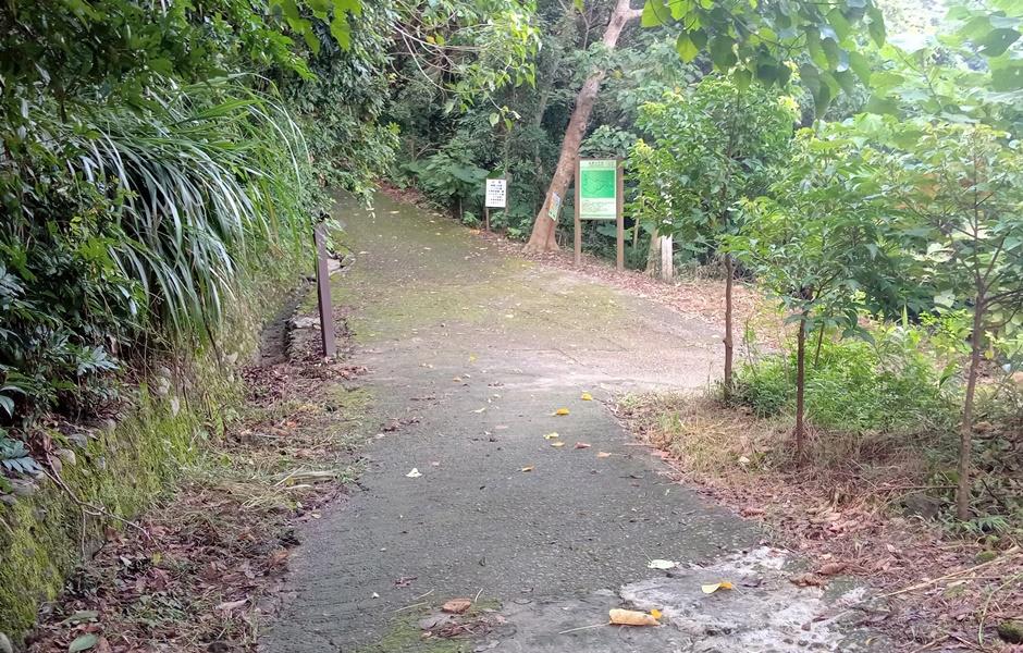 龍麟步道:119-20200822.jpg