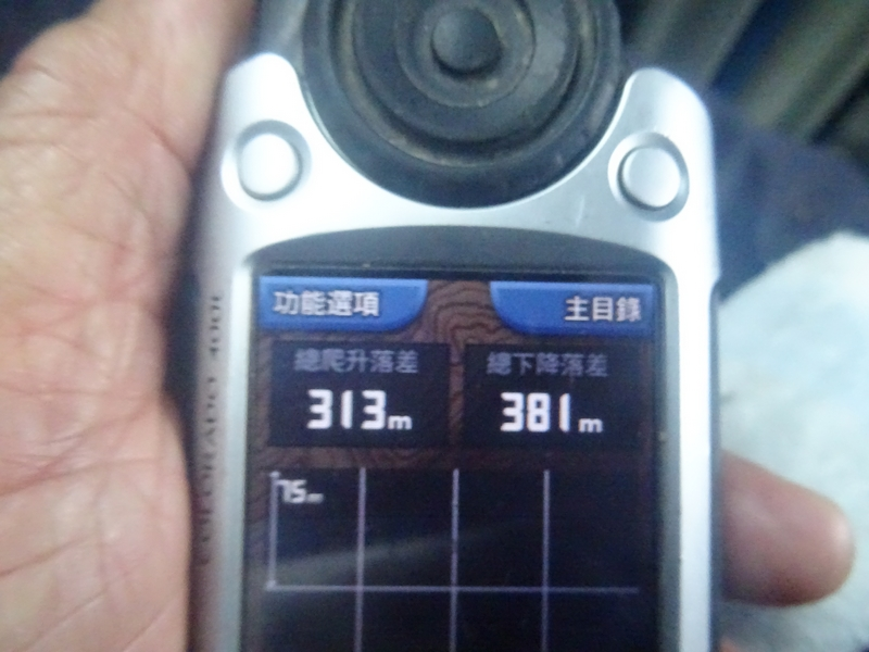 觀霧巨木步道:DSC02489.JPG