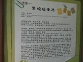 虎尾建國眷村:DSC05242.JPG