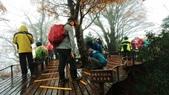 太平山山毛櫸步道:山毛櫸步道093-20201114.jpg
