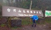 太平山山毛櫸步道:山毛櫸步道002-20201114.jpg