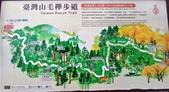 太平山山毛櫸步道:山毛櫸步道004-20201114.jpg