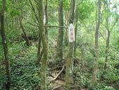 石牛山:DSC00694