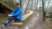 太平山山毛櫸步道:山毛櫸步道026-20201114.jpg