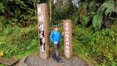 太平山山毛櫸步道:山毛櫸步道140-20201114.jpg