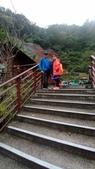 太平山山毛櫸步道:山毛櫸步道152-20201114.jpg