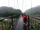太平山山毛櫸步道:山毛櫸步道154-20201114.jpg
