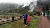 太平山山毛櫸步道:山毛櫸步道160-20201114.jpg