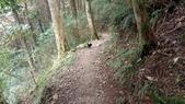 稍來山:144-20200905.jpg