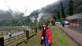 太平山山毛櫸步道:山毛櫸步道158-20201114.jpg