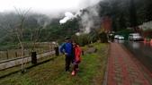 太平山山毛櫸步道:山毛櫸步道161-20201114.jpg