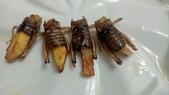 蟋蟀:059-20200830.jpg