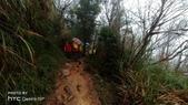 太平山山毛櫸步道:山毛櫸步道053-20201114.jpg