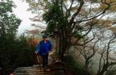 太平山山毛櫸步道:山毛櫸步道171-20201114.jpg