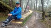 太平山山毛櫸步道:山毛櫸步道025-20201114.jpg