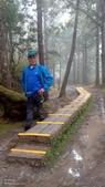 太平山山毛櫸步道:山毛櫸步道027-20201114.jpg