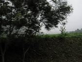巴馬1:巴馬1 003.jpg