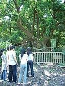 滋壽村‧1492/2010暑期夏令營:1492天山飯店 302.jpg