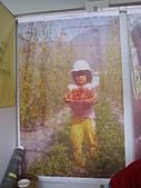 參展期間:第二屆玉林中藥展 199.jpg