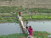 幫我們保護食物的橋頭阿媽:可怕的便橋..請小心...