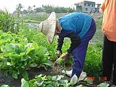幫我們保護食物的橋頭阿媽:DSC00974