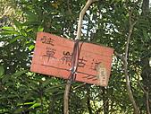 GO!!台北.3.4:IMG_6777.JPG