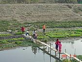 幫我們保護食物的橋頭阿媽:DSC00964