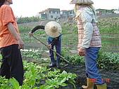 幫我們保護食物的橋頭阿媽:DSC00987