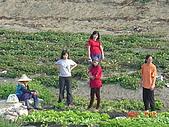 幫我們保護食物的橋頭阿媽:站好..聽聽阿媽說