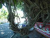 滋壽村‧1492/2010暑期夏令營:1492天山飯店 298.jpg