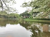 20200331中央大學流蘇:IMG_20200331_205254.jpg